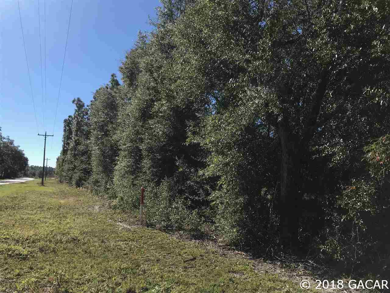 Beautifully wooded with lots of paved road frontage on State Road 21
